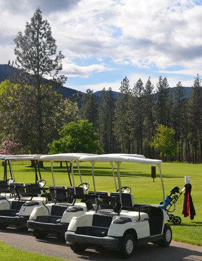 Cascade-par-3-powered-golf-carts